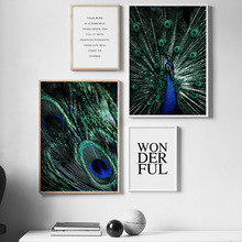 Peacock Feather Wonderful Nordic Posters And Prints Wall Art Canvas Painting Animals Pictures For Living Room Home Decor