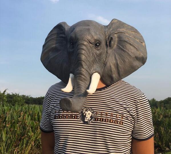 Elephant Maskalar Halloween Yetkin Lateks Maska Realistic Heyvan - Şənlik aksesuarları - Fotoqrafiya 5