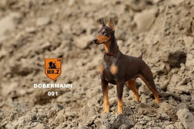ФОТО 1/6 Mr.Z Dobermann Dog DB001 Resin Animal Series,In stock!