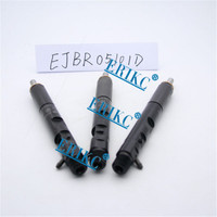ERIKC EJBR05101D Diesel Fuel EJBR0 5101D Common Rail Injectors 8200676774 Auto Parts Replacements Nozzle Assy 5101D