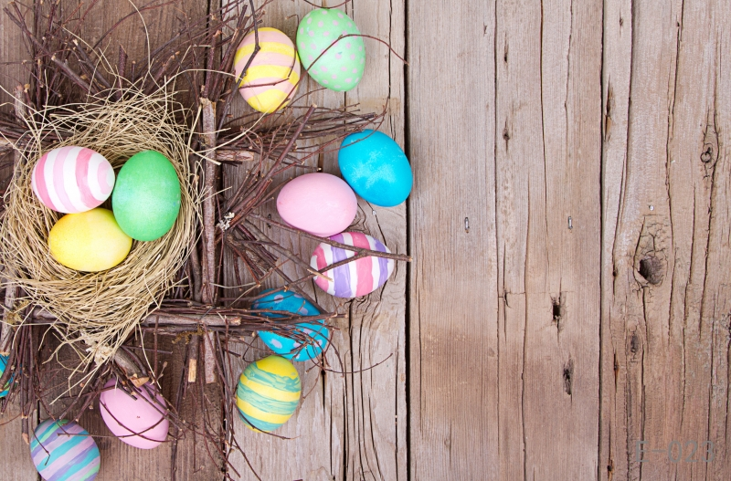 Easter eggs Photo Vinyl Backdrop wood wall Photographic Studio Background newborn Photography