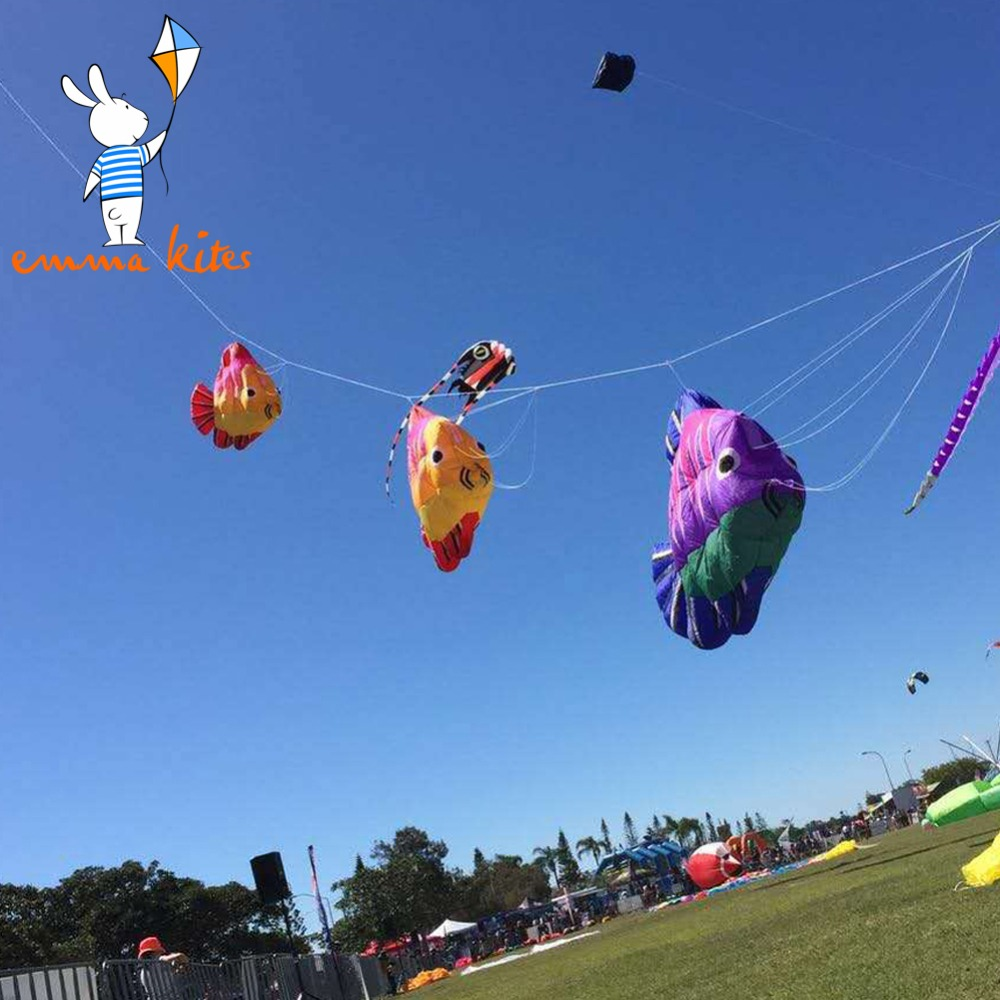 5 m gonflable plage cerf-volant extérieur spectacle Festival activité doux cerf-volant forme de poisson 4 couleurs au choix