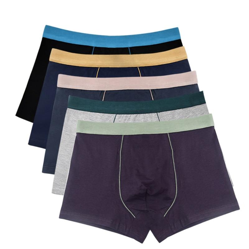 5 Pcs/Lot ! Cotton Men Boxers Ventilate Plus Size Boxer Shorts Solid Soft Underwear Bokserki Xl To 8xl
