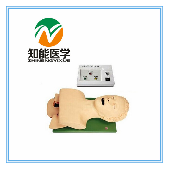BIX-J5S Advanced Electronic Teeth Pressure Alarm Endotracheal Intubation Training Model W047