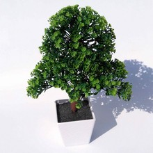 Artificial plants bonsai for Home Decorative artificial plastic trees flowers decoration Imitation potted holly