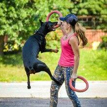 Dog Agility Training Toys