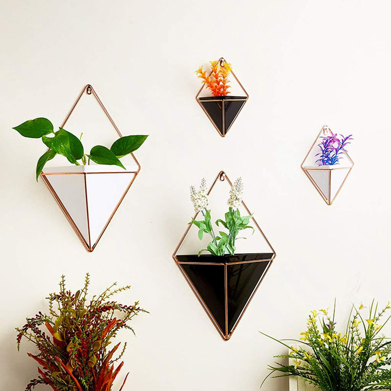 Geometric Iron Succulent Plant Wall Vase | Wall Hanging Planter