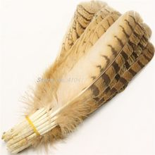 Wholesale 50pcs Natural Eagle Bird Feathers 10-12inches/25-30cm