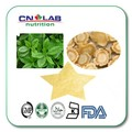 1 kg 100% Natural Chinês Extrato da Erva 5% Ginsenosides Panax Ginseng Extrato de Raiz