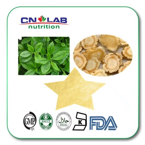 1kg 100% Natural Chinese Herb Extract 5% Ginsenosides Panax Ginseng Root Extract
