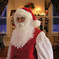 White Santa Beard and Wig Adult Mens Christmas Party Cosplay Hair Wig