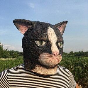 Image 4 - Mascarilla de látex con cara completa para adultos, máscara divertida de gato loco para Halloween, disfraz de gato para fiesta de miedo