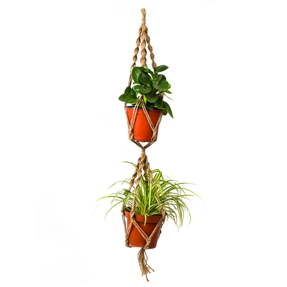 Indoor Plant Hooks Reviews - Online Shopping Indoor Plant Hooks ...