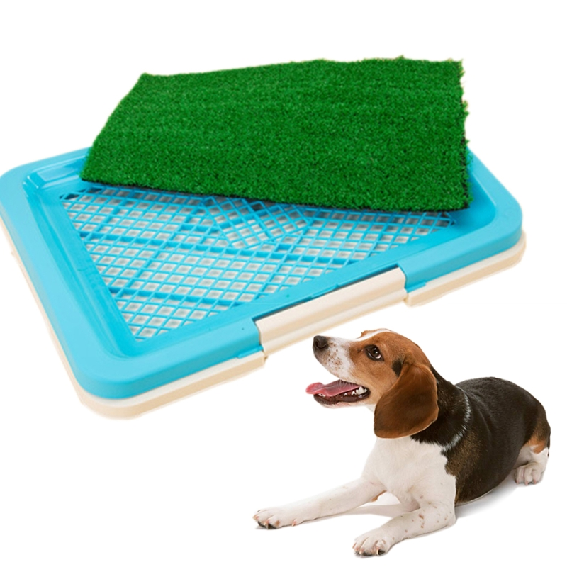 Misterolina 1 Pcs Pet Dog Cat Reusable Artificial Grass Toilet Mat Indoor Potty Trainer Grass Turf Pad Pet Supplies Accessories image