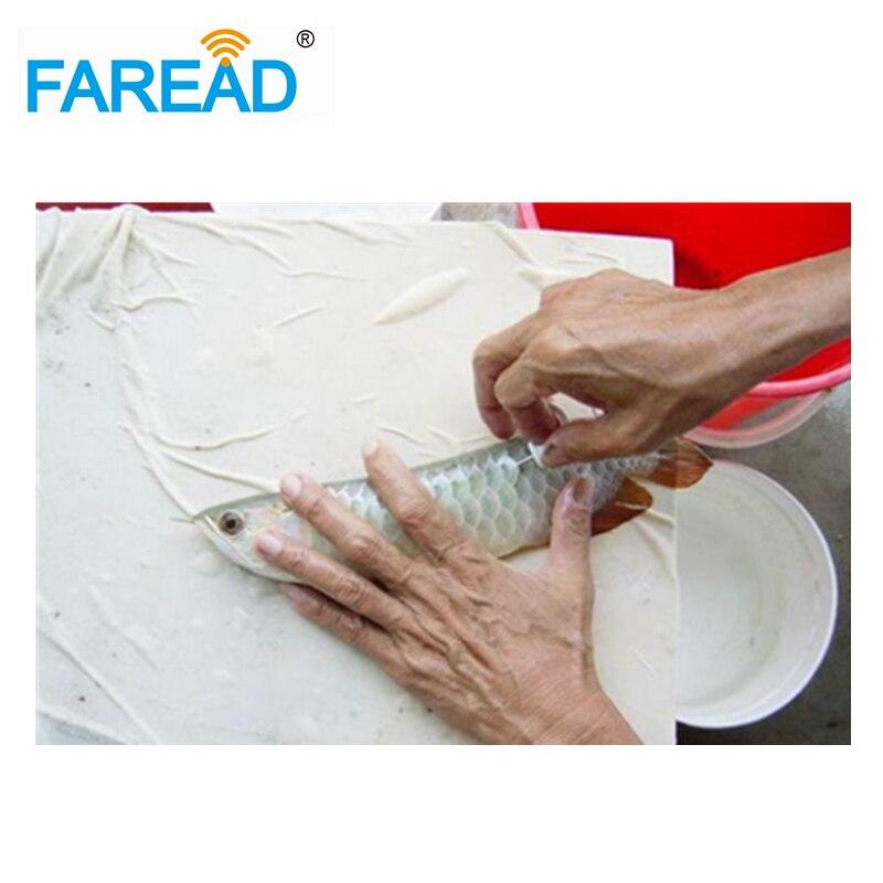 Free Shipping RFID Injector FDX-B ISO11784/5 8mm Glass Tube Animal Microchip Needle For Fish Farming ,aquarium,chicken