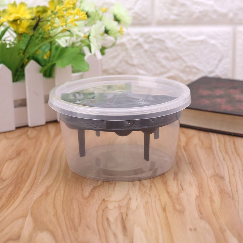 2019 New Reptile Egg Incubator Plastic Lizard Snake Gecko Eggs Hatcher Hatching Box Pet Supplies