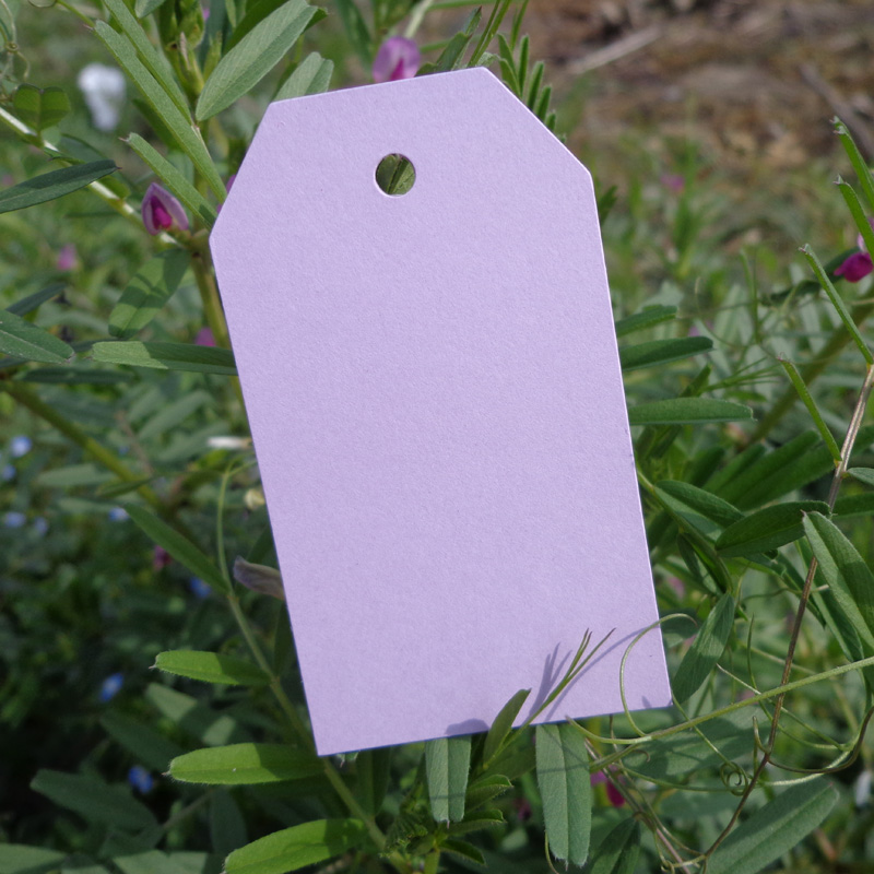 50pcs Light Purple DIY Paper Gift Tag Party Wedding Message Gift Hang Tag,Christmas Craft Cards Label Hemp String Included