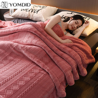 Home flannel Blanket Winter pink super warm soft blankets Sofa/Bed/Plane Travel throw thick Blanket solid color Bedspread