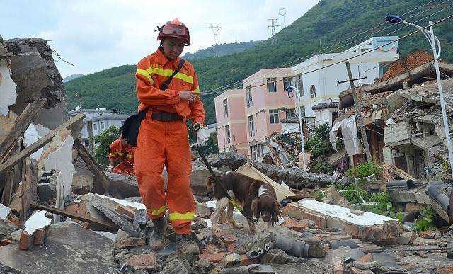 地震突发,高楼层与低层住户如何自救?