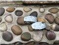 Горячие продажи Хром Серебристый цвет Замена Спортивный Поляризованные Линзы для Oakley Монстр Щенка Солнцезащитные Очки 100% UVA и UVB