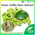 GMP certificated herbal supplement high quality green coffee bean Capsules 500mg*100pcs