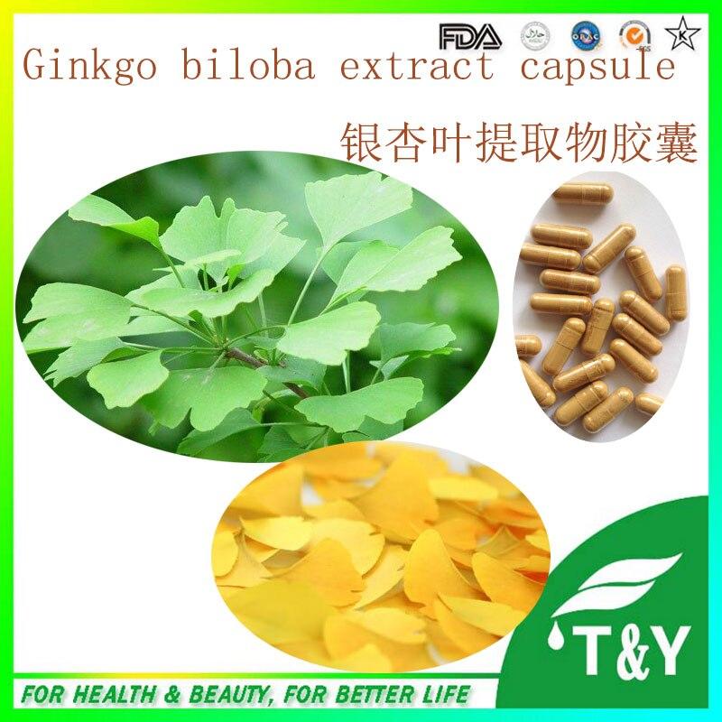 Anti-cancer enhance immunity ginkgo biloba herbal extract capsule 500mg x 500pcs