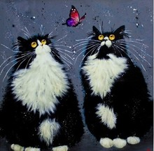 Funny cat butterfly picture Diy 5D diamond Painting cross stitch Needlework Home Decor diamond mosaic Full diamond embroidery
