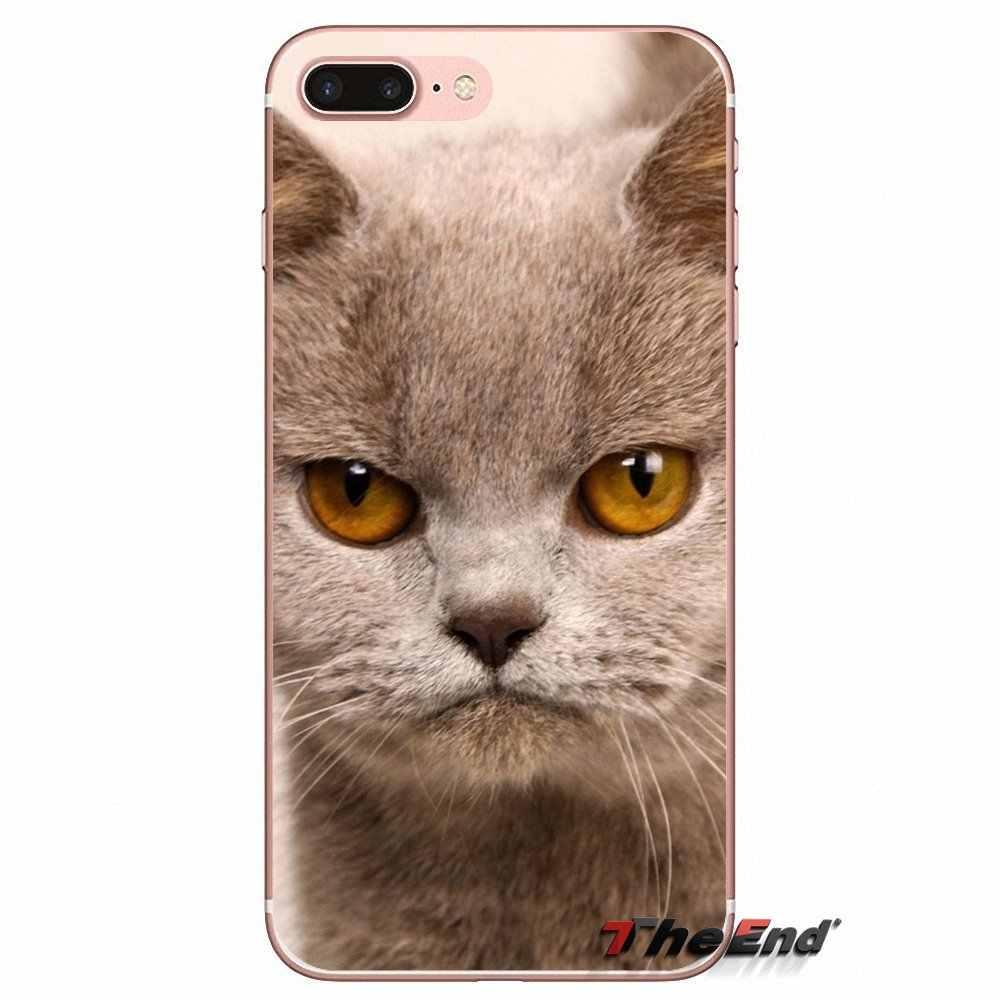 Кошка носить очки забавные Silica гелевый из термопластика чехол для iPhone X 4 4S 5 5S 5C SE 6 6 S 7 8 плюс samsung Galaxy J1 J3 J5 J7 A3 A5 2016 2017