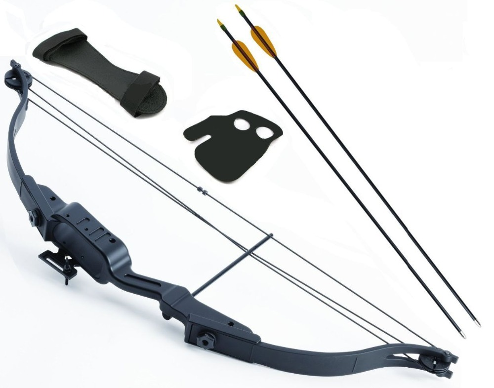 2019 PSE Carbon Air Stealth EC Compound Bow