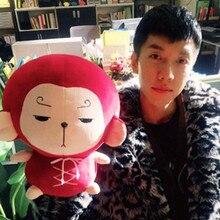 Цветок Путешествия обезьяна INS кукла ребенок Корейский Телевизор Утешительный диван Xams подарок игрушки плюшевый кролик спящий плюшевая игрушка подушка