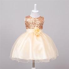 Baby Girl Dress 1 Year Old Girl Birthday Dress Champagne Sequin Beaded Tulle  Dress Fluffy Tutu 22e28c223315