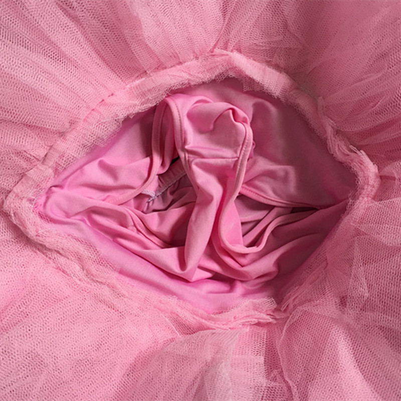 Picture of 2017 Pink Childrens Swan Lake Costume Women Adult Ballet Leotard Kid Ballet Dress Professional Ballet Tutus Dress For Girls