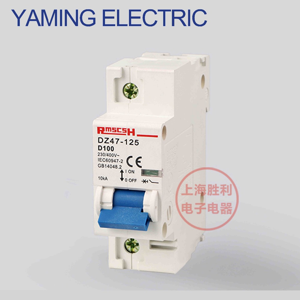 P269 DZ47 D type C45 Mini Circuit breaker Air switch MCB 1P 80A/100A/125A Miniature 230V AC Single pole ON-OFF dz47 100h 63a 2p ac 230v or 400v mini circuit breaker mcb cutout switch breaker switch chopper 2pcs