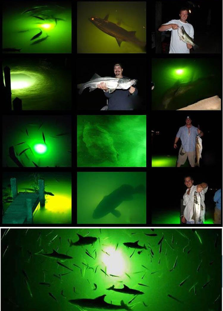 LED underwater fishing lures