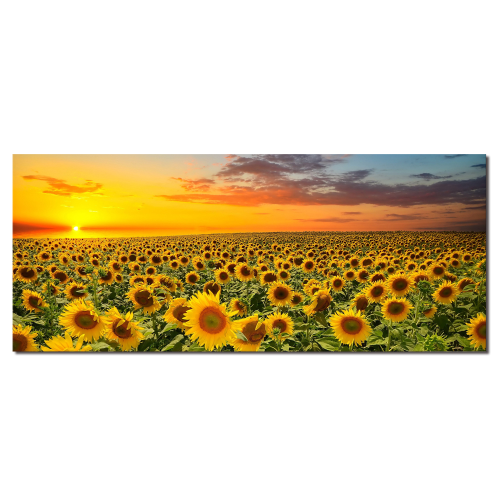 Unframed Modern Golden Sunflower Field Canvas Printed Art Decor Sunset Wall Painting Nature Scenery Poster Living Room Hotel