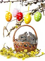 200Cm*150Cm Easter Photography Backdrops Basket Branch Bunny Photo Studio Background Easter Day Zj