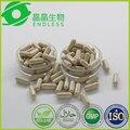 5 lotes 60 caps/lot 500 mg cápsula de graviola graviola alternativa para o tratamento do câncer