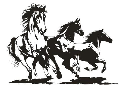 Heißer Verkauf Tier Wandaufkleber Pferd PVC Kunst Wandaufkleber Abnehmbare Drei Pferde Schlafzimmer...