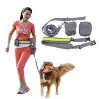 Multifunction Elastic Nylon Belt Running Dog Leash Padded Waist With Reflective Strip Zipper Bag Bottle