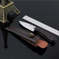Free Shipping Stainless Steel Fixed Knife Hunting Knife Outdoor Tool Camping Small Fixed Blade Knife Color