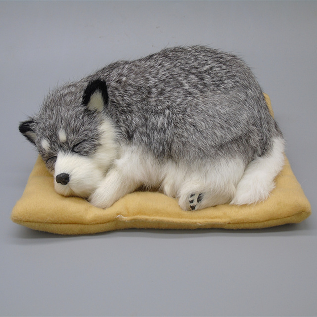 Simulatie hond true bont met doek pad slapen dier interieur ...