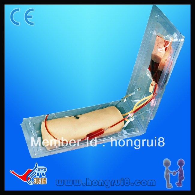 ISO Advanced Elbow Venipuncture Training model, IV Injection Elbow iso iv training hand venipuncture hand model iv injection training model