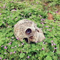 Resin Craft Skull Statues & Sculptures Garden Statues Sculptures Skull Ornaments Creative Art Carving Statue skull resin
