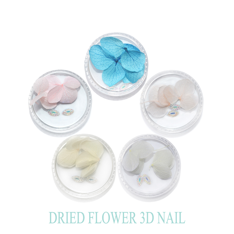 YWK 1 Box 3Pcs Flowers 2Pcs Drills Colorful Dry Flower 3D Nail Decoration Preserved Flower Manicure Nail Art Decoration