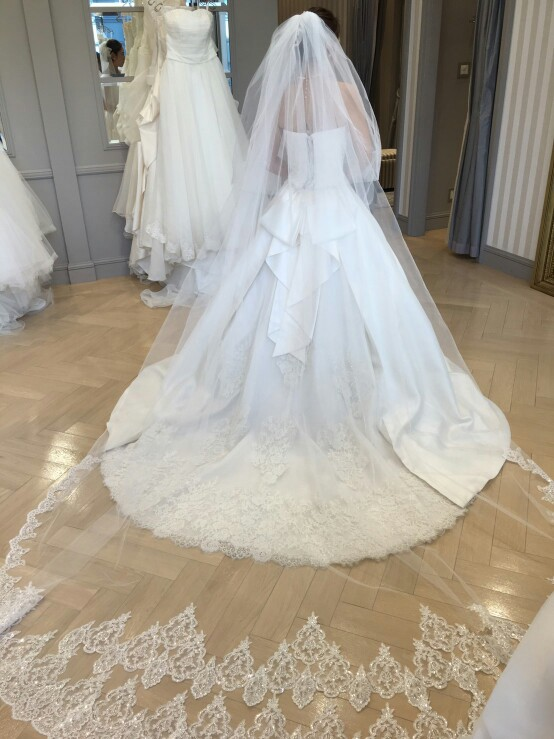 High Quality 2 Tiers Blusher Cover Face Cathedral Shining Lace Wedding Veil 2018