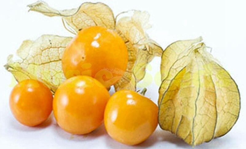 tomate graines vente achetez des lots petit prix tomate graines vente en provenance de. Black Bedroom Furniture Sets. Home Design Ideas