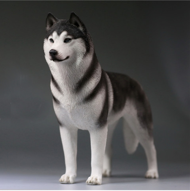 mnotht 1 6 siberian husky model toys simulation pet dog model for 12in action figure toy l30 collection hobbies pre sale in action toy figures from toys