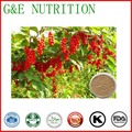 Boosts mental function plant extract schisandra extract 1000g