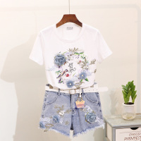 Summer 2019 New Embroidered Three dimensional Flower Printed Short Sleeved Tee Shirt + Ripped Jeans Short Denim Pants Suit Women