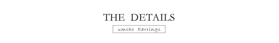 Honyy  925 sterling silver earring for women EUJ089Z-1-PC (7)